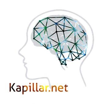 Mein Logo - Kopf mit angedeutetem Gehirn und einem Netz darüber.